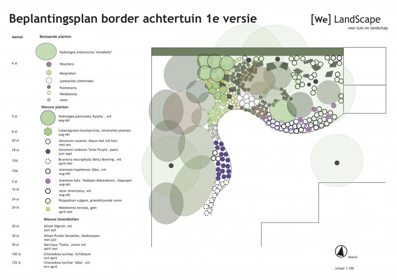 Beplantingsplan-border-achtertuin-1e-versie