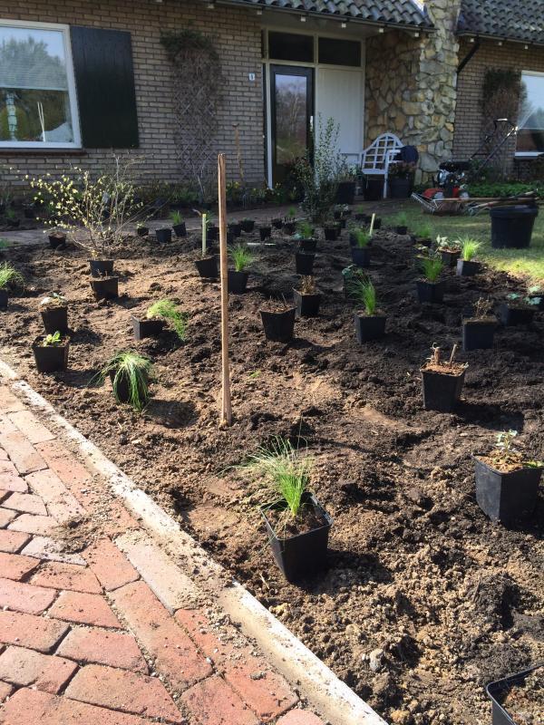 Planten staan klaar volgens het beplantingsplan