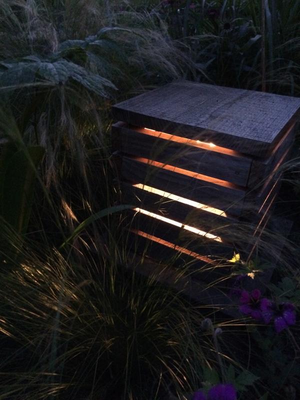 De fijne structuren van de siergrassen vangen het licht
