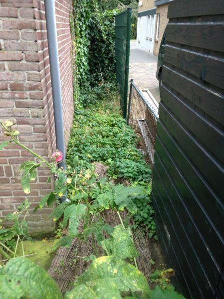 tuinrenovatie-Epse-aanvang-6-We-Landscape