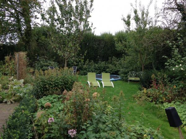 tuinrenovatie-Epse-aanvang-We-Landscape